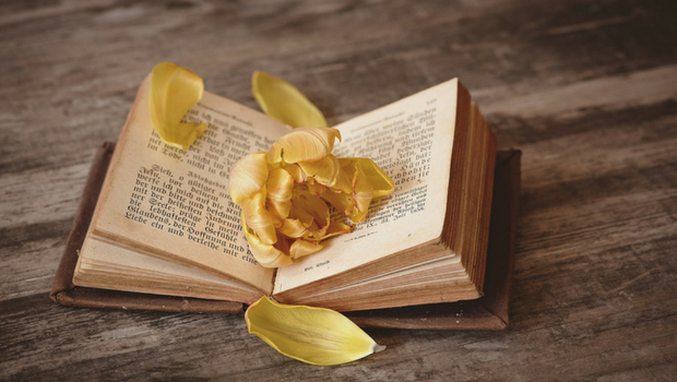 Romantische Nachricht im Buch